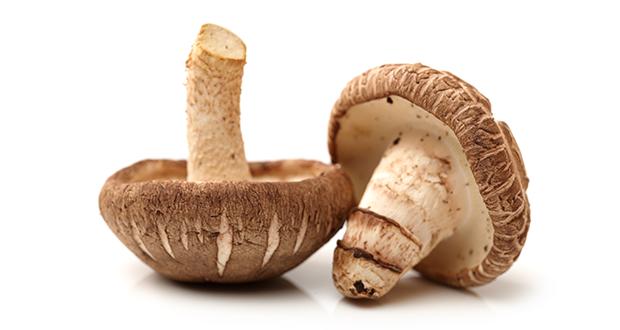 shiitake-mushroom-anti-cancer-benefits